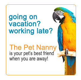 working late or going on vacation? the pet nanny of elk grove offers loving care!